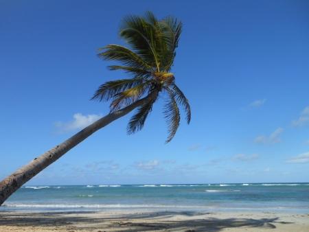 Strandurlaub Afrika